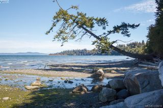 Photo 28: 4494 Majestic Dr in VICTORIA: SE Gordon Head House for sale (Saanich East)  : MLS®# 829129