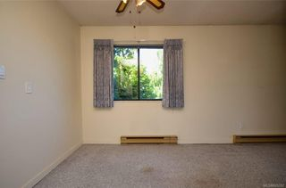 Photo 9: 304 1571 Mortimer St in Saanich: SE Mt Tolmie Condo for sale (Saanich East)  : MLS®# 845262