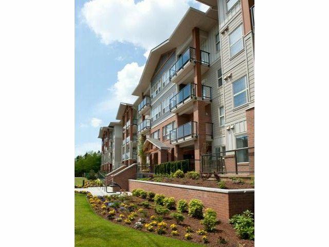 Main Photo: # 404 20219 54A AV in Langley: Langley City Condo for sale : MLS®# F1307857
