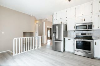 Photo 13: 42 STIRLING Road in Edmonton: Zone 27 House for sale : MLS®# E4252891