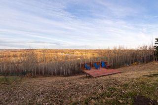 Photo 16: 220 GRANDISLE Point in Edmonton: Zone 57 House for sale : MLS®# E4240930