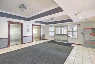 Photo 34: 314 1920 14 Avenue NE in Calgary: Mayland Heights Apartment for sale : MLS®# A1112494