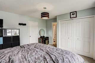 Photo 28: 19 BRIDLECREST Road SW in Calgary: Bridlewood Detached for sale : MLS®# C4304991