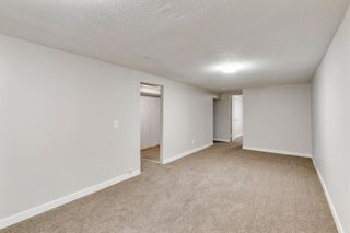 Photo 23: 2506 35 Street SE in Calgary: Southview Detached for sale : MLS®# A1146798