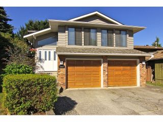 Photo 1: 3369 271B Street in Langley: Aldergrove Langley House for sale : MLS®# F1318472