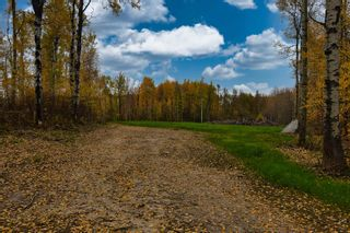Photo 9: #9 North Pigeon Lake Estates: Rural Wetaskiwin County Rural Land/Vacant Lot for sale : MLS®# E4265016