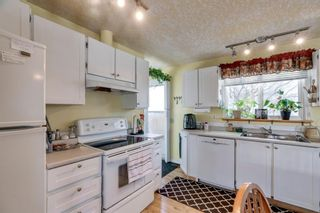 Photo 6: 10 Abalone Crescent NE in Calgary: Abbeydale Detached for sale : MLS®# A1072255