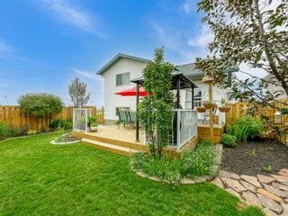 Photo 31: 101 Appleside Close SE in Calgary: Applewood Park Detached for sale : MLS®# A1128476