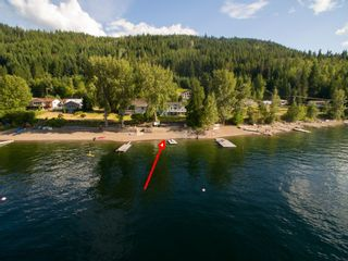 Photo 80: 3513 Eagle Bay Road in Eagle Bay: Waterfront House for sale : MLS®# 10100248