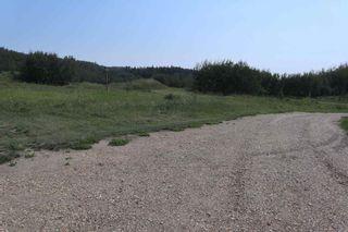 Photo 38: 23509 Twp 484: Rural Leduc County House for sale : MLS®# E4258040