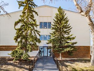 Photo 18: 213 3420 50 Street NW in Calgary: Varsity Apartment for sale : MLS®# A1095865