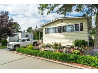 """Photo 2: 110 3665 244 Street in Langley: Otter District Manufactured Home for sale in """"Langley Grove Estates"""" : MLS®# R2383716"""