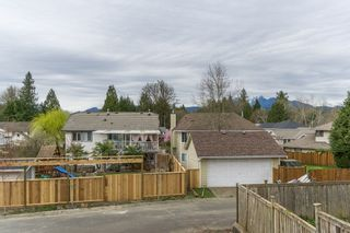 Photo 21: 23375 124 Avenue in Maple Ridge: East Central House for sale : MLS®# R2048658