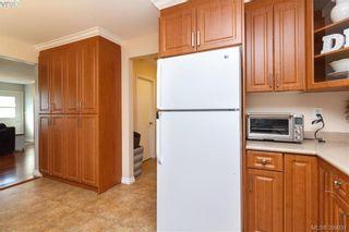 Photo 9: 622 Broadway St in VICTORIA: SW Glanford Half Duplex for sale (Saanich West)  : MLS®# 797925