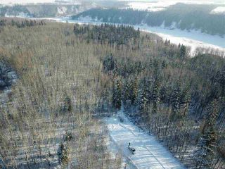 Photo 4: 50322 Rge Road 10: Rural Parkland County Rural Land/Vacant Lot for sale : MLS®# E4247117