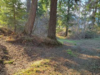 Photo 8: 3572 Parkview Cres in : PA Port Alberni Land for sale (Port Alberni)  : MLS®# 858457
