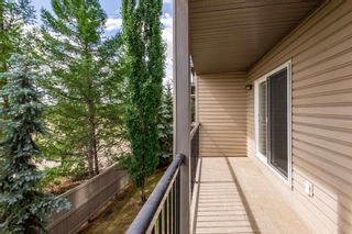 Photo 31: 202 309 CLAREVIEW STATION Drive in Edmonton: Zone 35 Condo for sale : MLS®# E4250789
