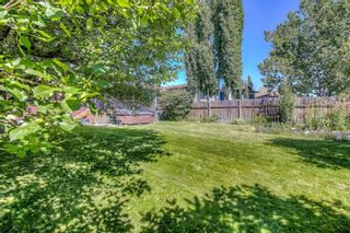 Photo 34: 44 DEERMOSS Crescent SE in Calgary: Deer Run Detached for sale : MLS®# A1018269