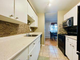 Photo 15: 110 10838 108 Street in Edmonton: Zone 08 Condo for sale : MLS®# E4231008