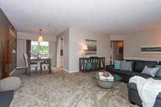 Photo 4: 4463 45A Avenue in Delta: Port Guichon House for sale (Ladner)  : MLS®# R2063199