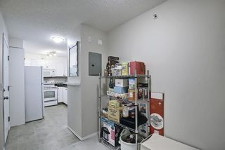 Photo 17: 1319 2395 Eversyde Avenue SW in Calgary: Evergreen Apartment for sale : MLS®# A1117927
