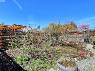 Photo 2: 1420 Haultain St in VICTORIA: Vi Oaklands House for sale (Victoria)  : MLS®# 809645