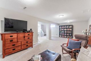 Photo 23: 21 WHITE OAK Crescent SW in Calgary: Wildwood Detached for sale : MLS®# A1026011