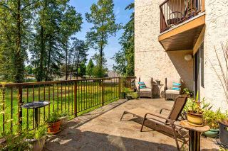 """Photo 11: 8 11900 228 Street in Maple Ridge: East Central Condo for sale in """"MOONLIGHT GROVE"""" : MLS®# R2338780"""