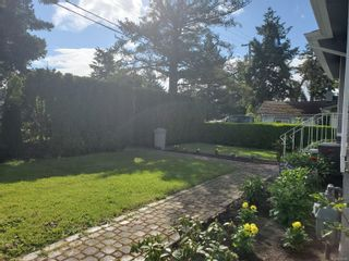 Photo 24: 4024 Carey Rd in : SW Marigold House for sale (Saanich West)  : MLS®# 876555