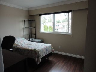 Photo 13: 6200 FRANCIS Road in Richmond: Woodwards 1/2 Duplex for sale : MLS®# R2323090