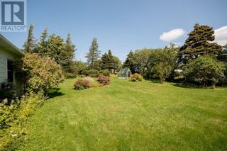 Photo 6: 298 Blackmarsh Road in St. John's: Other for sale : MLS®# 1237327