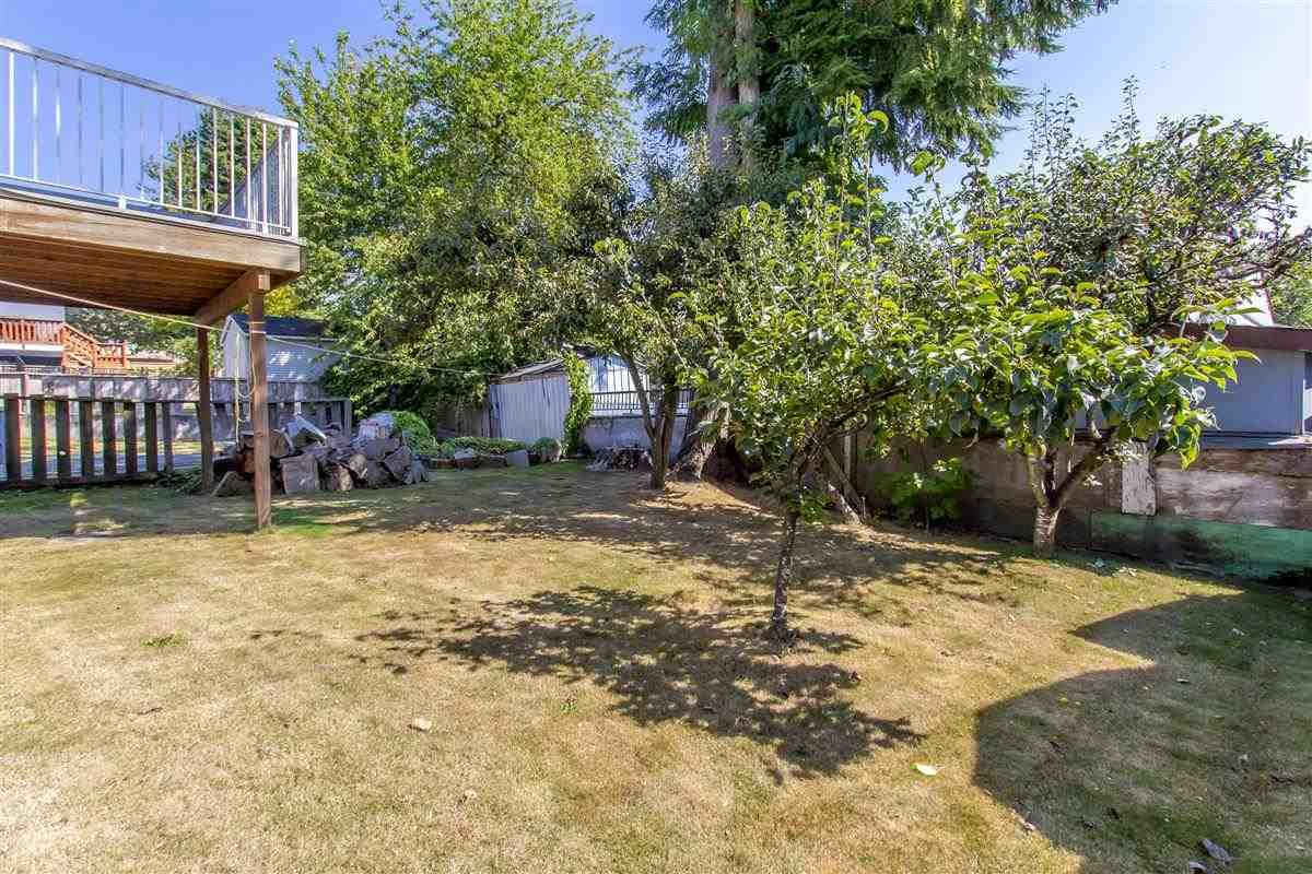 Photo 19: Photos: 5156 ABERDEEN Street in Vancouver: Collingwood VE House for sale (Vancouver East)  : MLS®# R2303162
