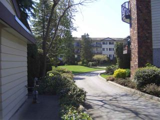 """Photo 27: 303 10160 RYAN Road in Richmond: South Arm Condo for sale in """"STORNOWAY"""" : MLS®# R2519204"""