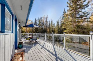 Photo 33: 111 Aspen Creek Drive: Rural Foothills County Detached for sale : MLS®# A1151574