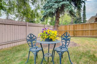 Photo 33: 15003 97 Avenue in Edmonton: Zone 22 House for sale : MLS®# E4254922