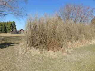 Photo 3: 4822 52 Avenue: Andrew Vacant Lot for sale : MLS®# E4242063