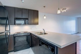 Photo 12: 332 35 Richard Court SW in Calgary: Lincoln Park Apartment for sale : MLS®# A1142484