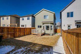 Photo 25: 169 CRANFORD Drive SE in Calgary: Cranston Detached for sale : MLS®# A1086236