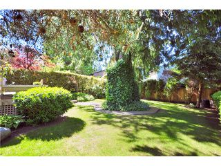 Photo 10: 503 CONNAUGHT Drive in Tsawwassen: Pebble Hill House for sale : MLS®# V830261