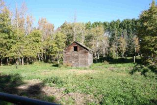 Photo 8: RR 220 And HWY 18: Rural Thorhild County House for sale : MLS®# E4227750