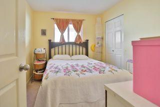 Photo 9: 11661 207 Street in Maple Ridge: Southwest Maple Ridge House for sale : MLS®# R2011453