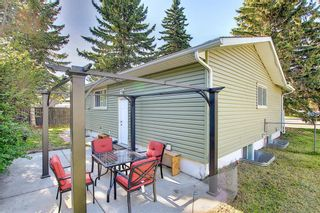 Photo 26: 44 Hardisty Place SW in Calgary: Haysboro Detached for sale : MLS®# A1116094
