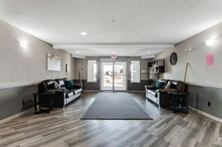 Photo 2: 328 1717 60 Street SE in Calgary: Red Carpet Apartment for sale : MLS®# A1090437