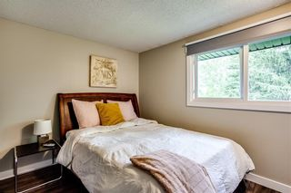 Photo 22: 215 CANOVA Place SW in Calgary: Canyon Meadows Detached for sale : MLS®# C4302357