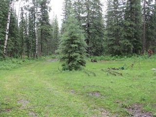 Photo 37: 70041 Highway 591: Rural Clearwater County Detached for sale : MLS®# C4305359