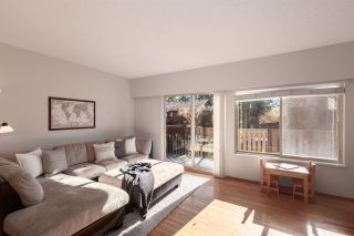 Photo 4: 1950 PURCELL Way in North Vancouver: Lynnmour Townhouse for sale : MLS®# R2347460