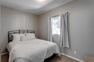 Photo 13: 613 15 Avenue NE in Calgary: Renfrew Detached for sale : MLS®# A1072998