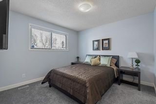 Photo 17: 136 3219 56 Street NE in Calgary: Pineridge Row/Townhouse for sale : MLS®# A1073017