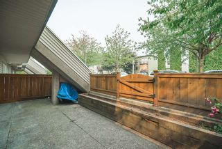 """Photo 7: 104 3938 ALBERT Street in Burnaby: Vancouver Heights Townhouse for sale in """"HERITAGE GREENE"""" (Burnaby North)  : MLS®# R2300525"""