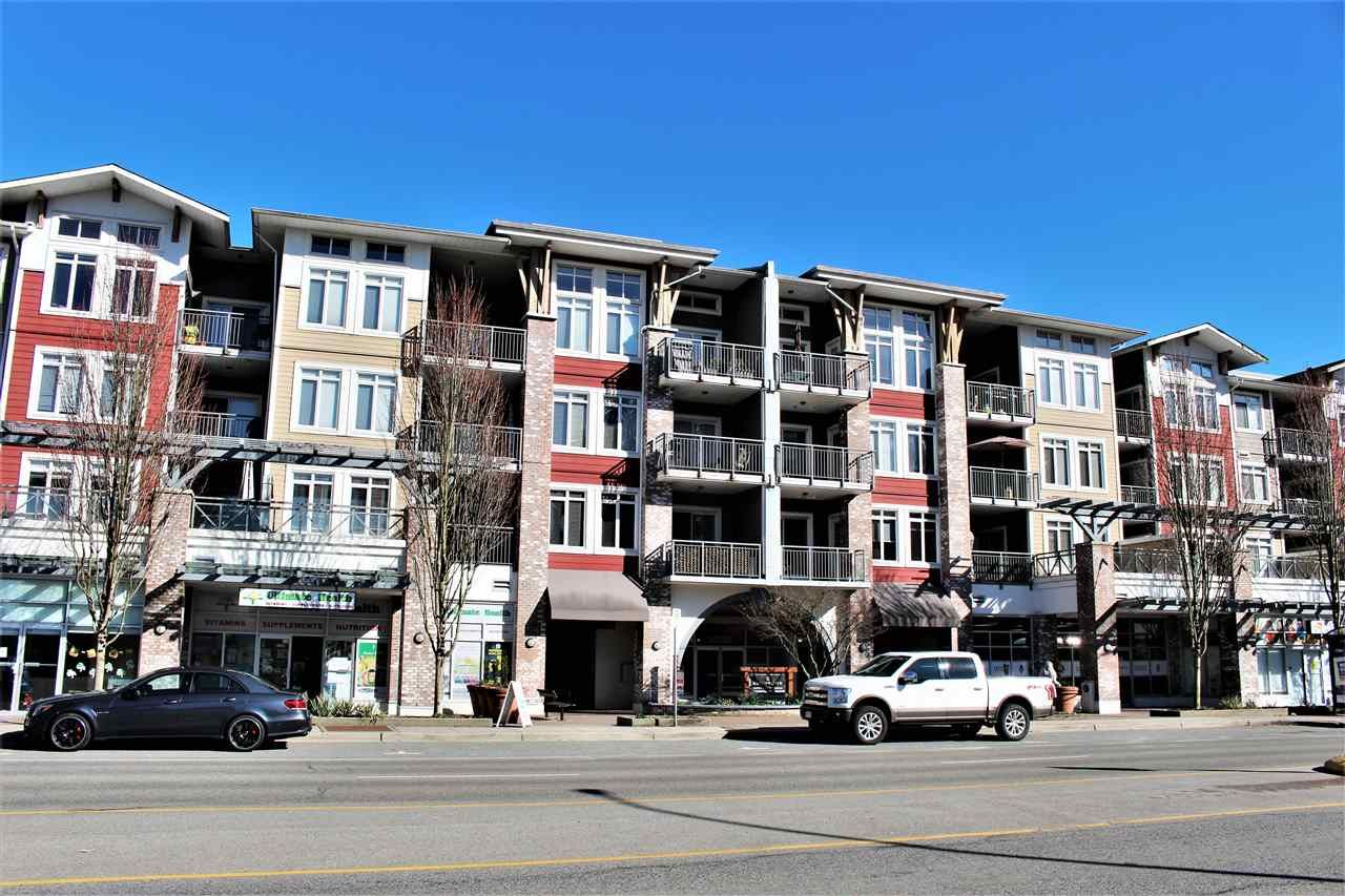 Main Photo: 203 12350 HARRIS ROAD in : Mid Meadows Condo for sale : MLS®# R2246506